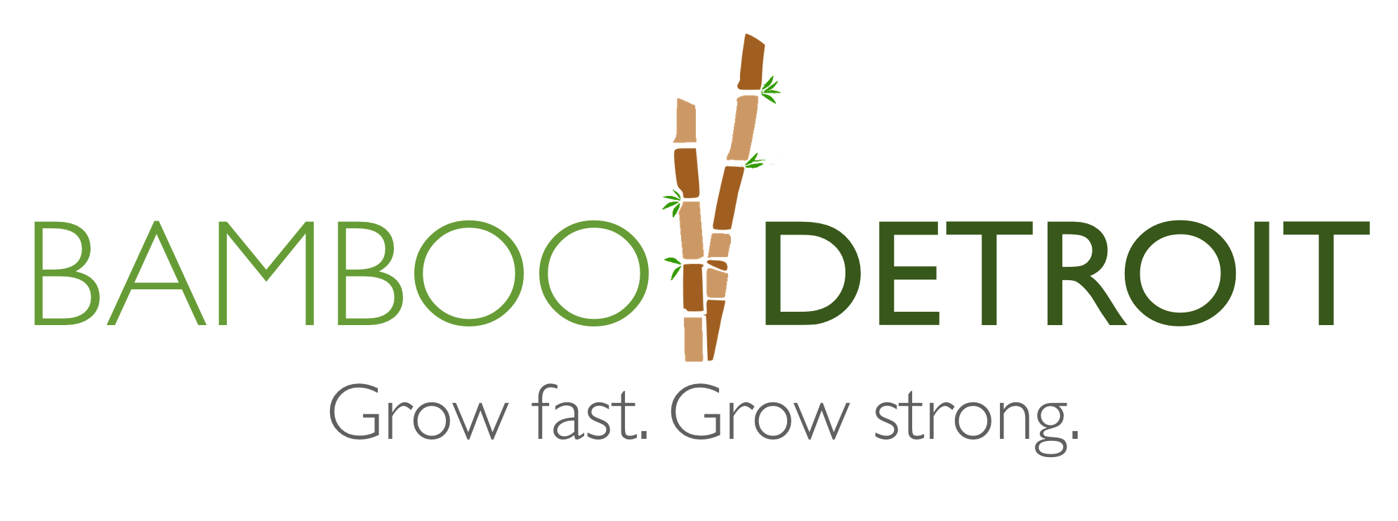 Bamboo-Detroit-